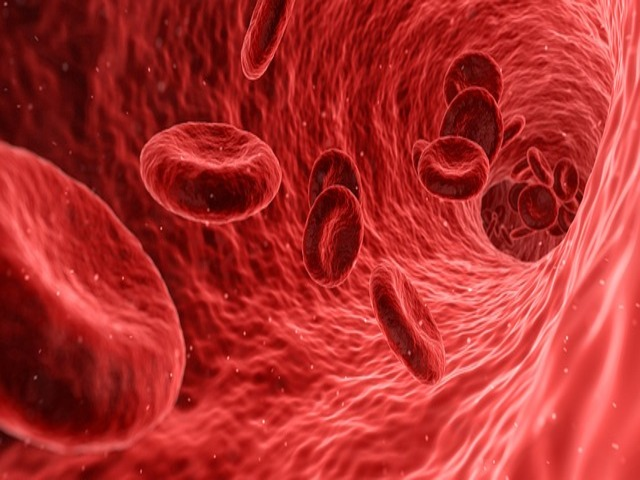 Anemia y diabetes    iMagazine    Soluciones para la diabetes
