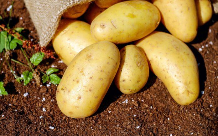 Características y propiedades de la patata | iMagazine | Soluciones para la  Diabetes